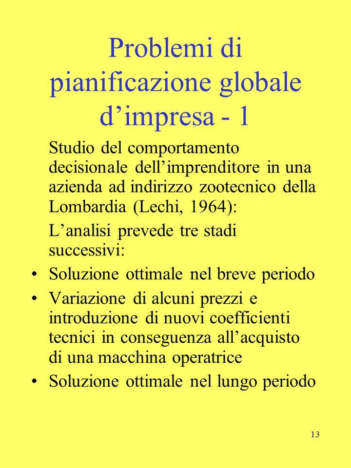 13 Problemi di pianificazione globale d'impresa - 1 Studio del comportamento decisionale dell'imprenditore in una azienda ad indirizzo zootecnico dell