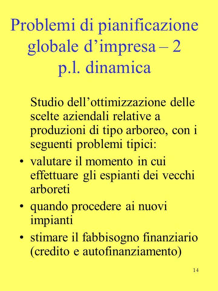 14 Problemi di pianificazione globale d'impresa – 2 p.l. dinamica Studio dell'ottimizzazione delle scelte aziendali relative a produzioni di tipo arbo