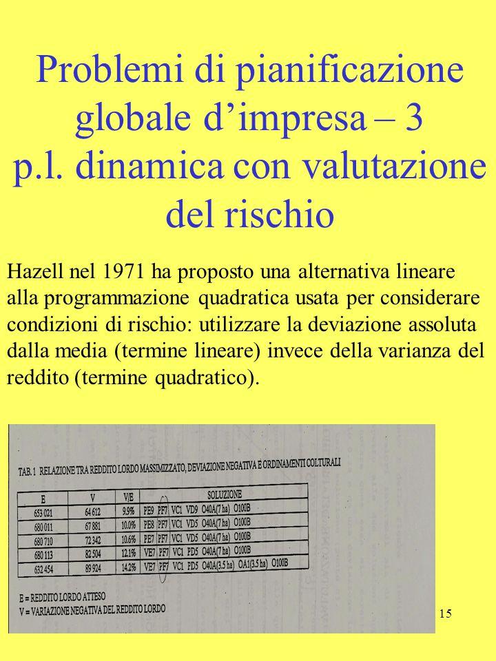 15 Problemi di pianificazione globale d'impresa – 3 p.l. dinamica con valutazione del rischio Hazell nel 1971 ha proposto una alternativa lineare alla