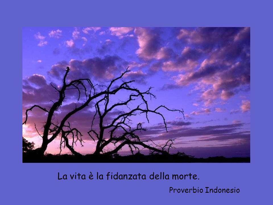 La vita è la fidanzata della morte. Proverbio Indonesio