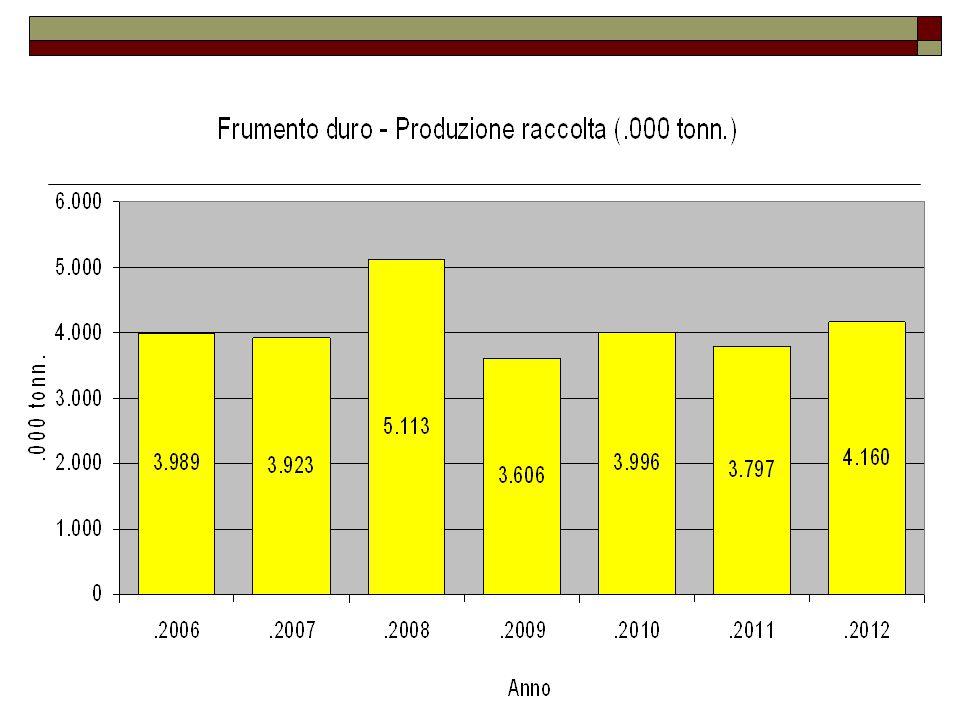 Frumento duro  Nel 2012 la produzione del duro ha recuperato, mantenendosi superiore a quella ottenuta negli ultimi quattro anni, anche se siamo lontani dall'eccezionale annata del 2008.