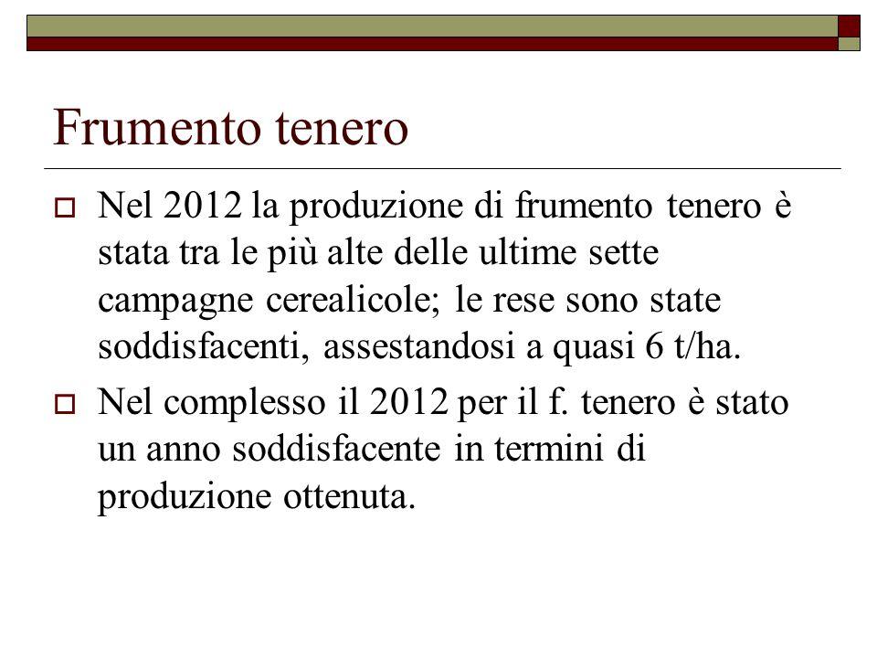 Frumento tenero  Nel 2012 la produzione di frumento tenero è stata tra le più alte delle ultime sette campagne cerealicole; le rese sono state soddisfacenti, assestandosi a quasi 6 t/ha.