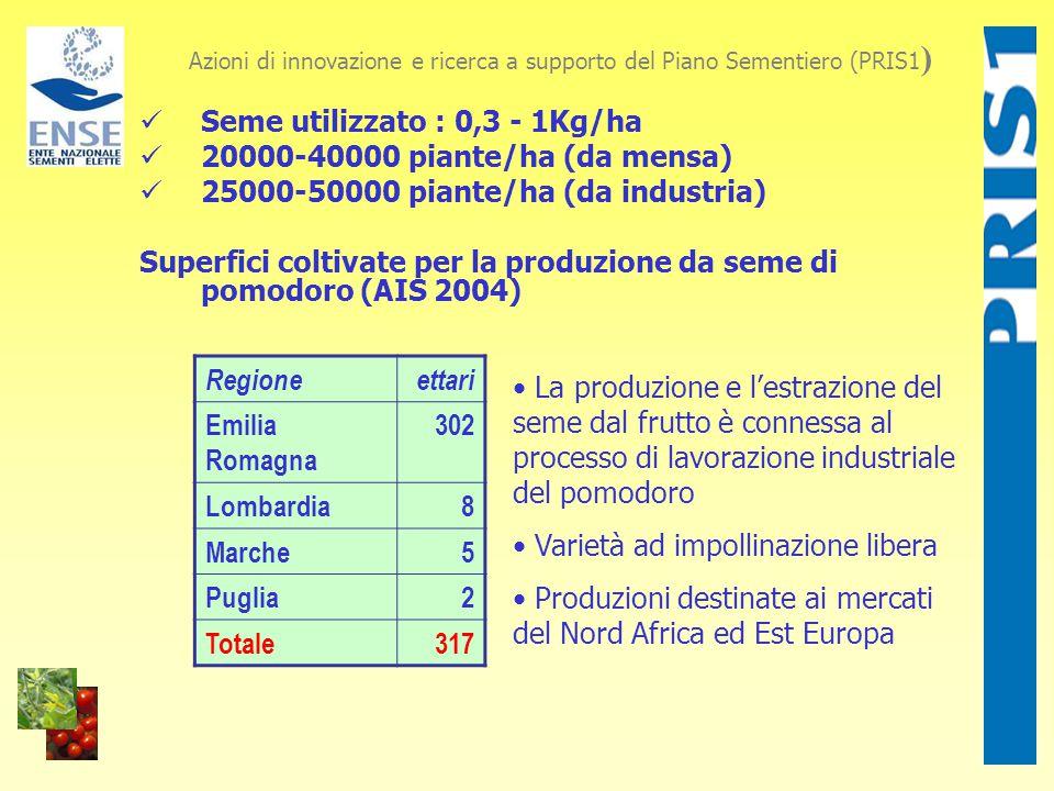 Seme utilizzato : 0,3 - 1Kg/ha 20000-40000 piante/ha (da mensa) 25000-50000 piante/ha (da industria) Superfici coltivate per la produzione da seme di pomodoro (AIS 2004) Azioni di innovazione e ricerca a supporto del Piano Sementiero (PRIS1 ) Regioneettari Emilia Romagna 302 Lombardia8 Marche5 Puglia2 Totale317 La produzione e l'estrazione del seme dal frutto è connessa al processo di lavorazione industriale del pomodoro Varietà ad impollinazione libera Produzioni destinate ai mercati del Nord Africa ed Est Europa