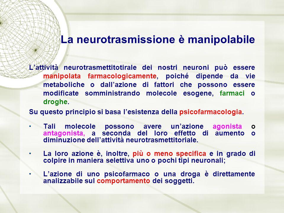 La neurotrasmissione è manipolabile L'attività neurotrasmettitotirale dei nostri neuroni può essere manipolata farmacologicamente, poiché dipende da v