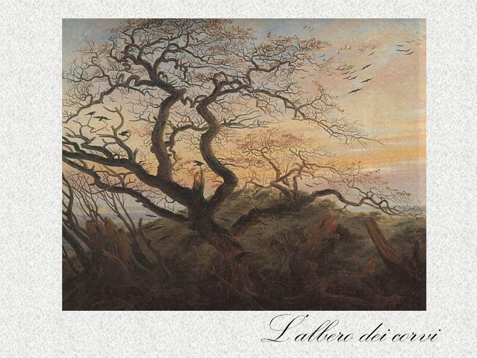 L'albero solitario