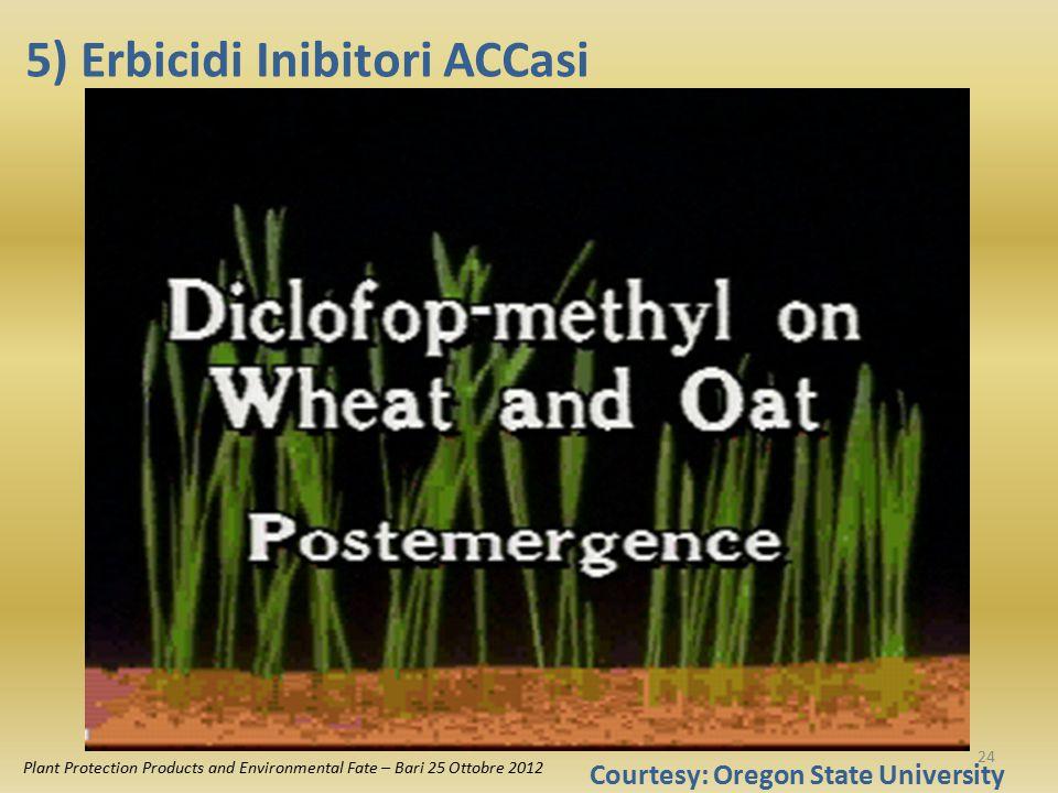 5) Erbicidi Inibitori ACCasi Plant Protection Products and Environmental Fate – Bari 25 Ottobre 2012 Courtesy: Oregon State University 24