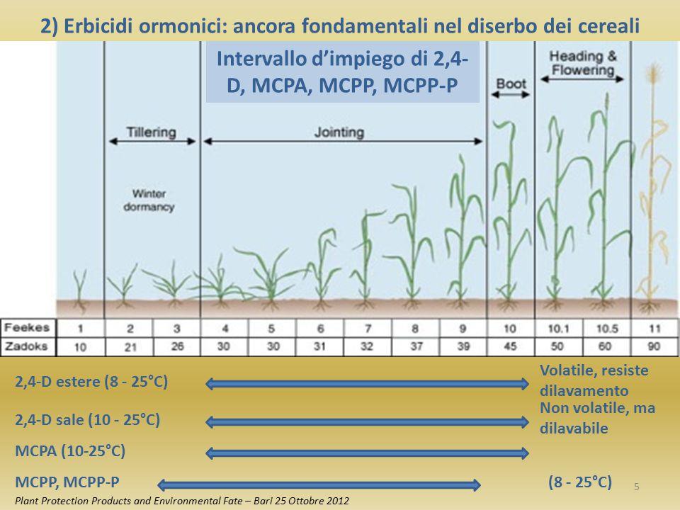 Appartengono al gruppo degli erbicidi di post emergenza dei cereali ad azione ormonica anche: 1968DicambaAcido 3,6-Dicloro-o-anisico 1979Clopiralid Acido 3,6-Dicloropicolinico 1991FluroxypirAcido 4-amino-3,5-dicloro-6- fluoro-2-piridilossiacetico Attività Questi erbicidi sono assorbiti per via fogliare e traslocati per via floematica e xilematica.