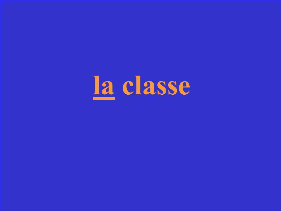 Scrivi l'articolo determinativo _____ classe
