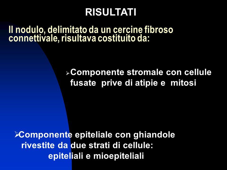 Il nodulo, delimitato da un cercine fibroso connettivale, risultava costituito da:  Componente stromale con cellule fusate prive di atipie e mitosi RISULTATI  Componente epiteliale con ghiandole rivestite da due strati di cellule: epiteliali e mioepiteliali