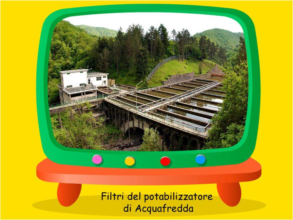 Vasche di sedimentazione potabilizzatore di Prato