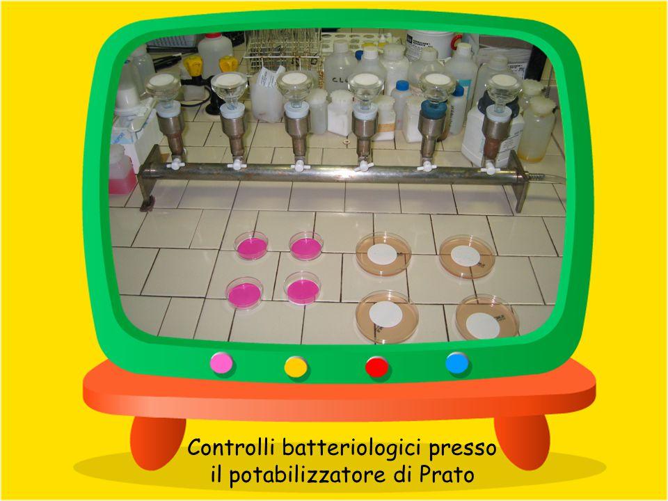 Strumenti per il monitoraggio on-line presso il potabilizzatore di Prato