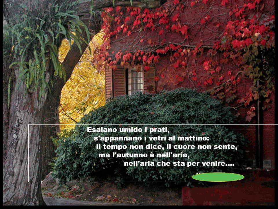 Esalano umido i prati, s appannano i vetri al mattino: il tempo non dice, il cuore non sente, ma l autunno è nell aria, nell aria che sta per venire....