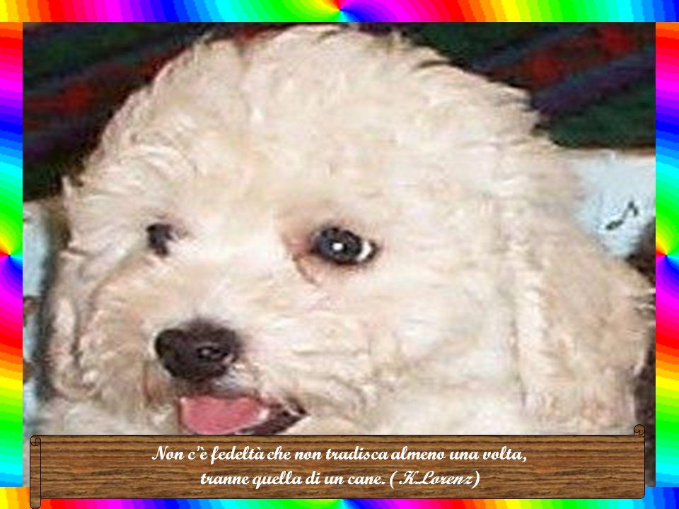 Più conosco gli uomini, più amo i cani. (Madame De Savignè)