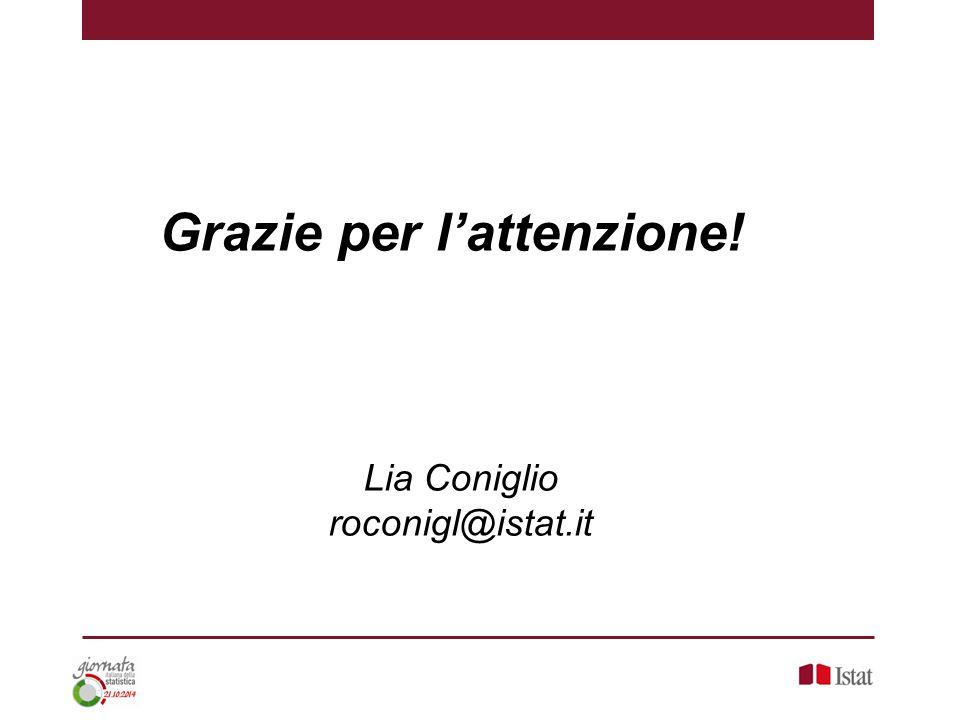 Grazie per l'attenzione! Lia Coniglio roconigl@istat.it