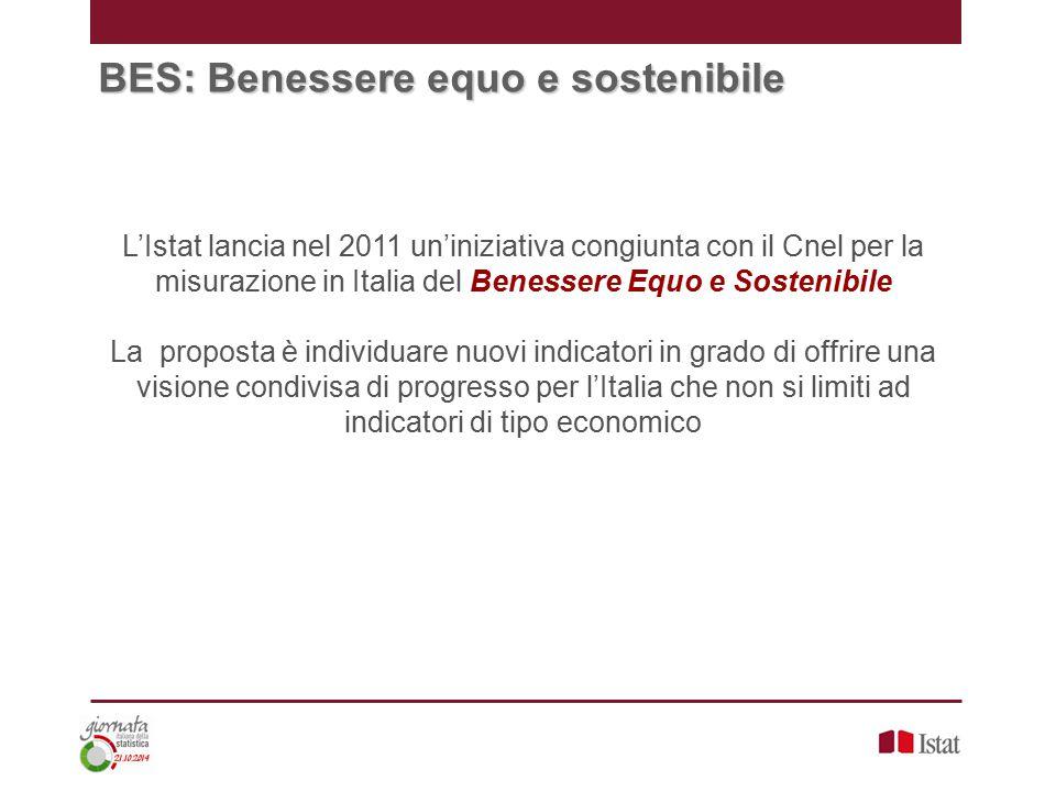 BES: Benessere equo e sostenibile L'Istat lancia nel 2011 un'iniziativa congiunta con il Cnel per la misurazione in Italia del Benessere Equo e Sostenibile La proposta è individuare nuovi indicatori in grado di offrire una visione condivisa di progresso per l'Italia che non si limiti ad indicatori di tipo economico
