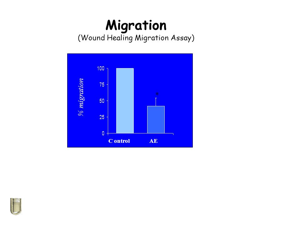 % migration C ontrol AE Migration (Wound Healing Migration Assay) *