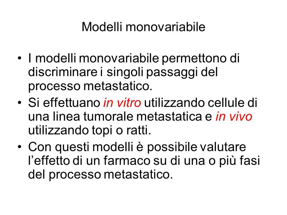 Modelli monovariabile I modelli monovariabile permettono di discriminare i singoli passaggi del processo metastatico. Si effettuano in vitro utilizzan