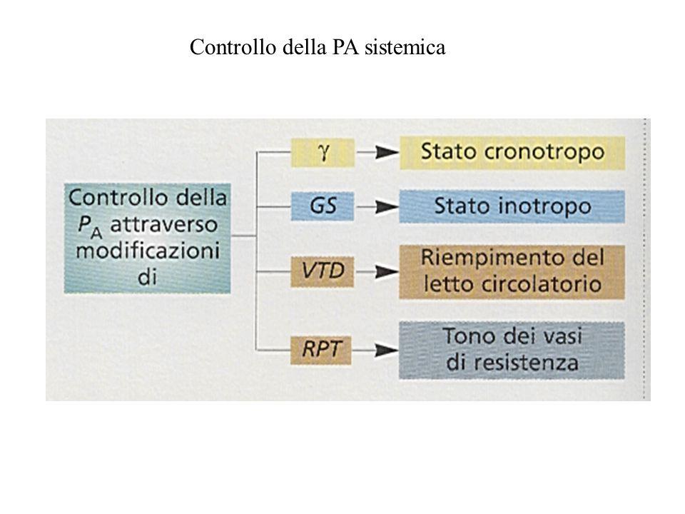 Controllo della PA sistemica