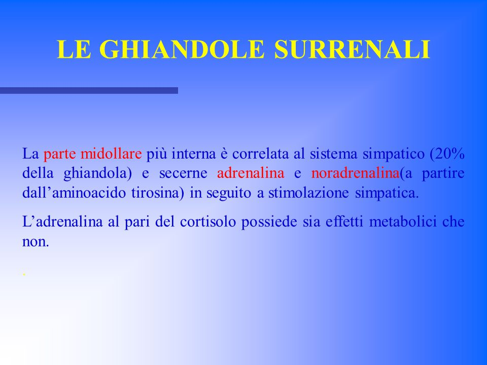 CORTICALE MIDOLLARE