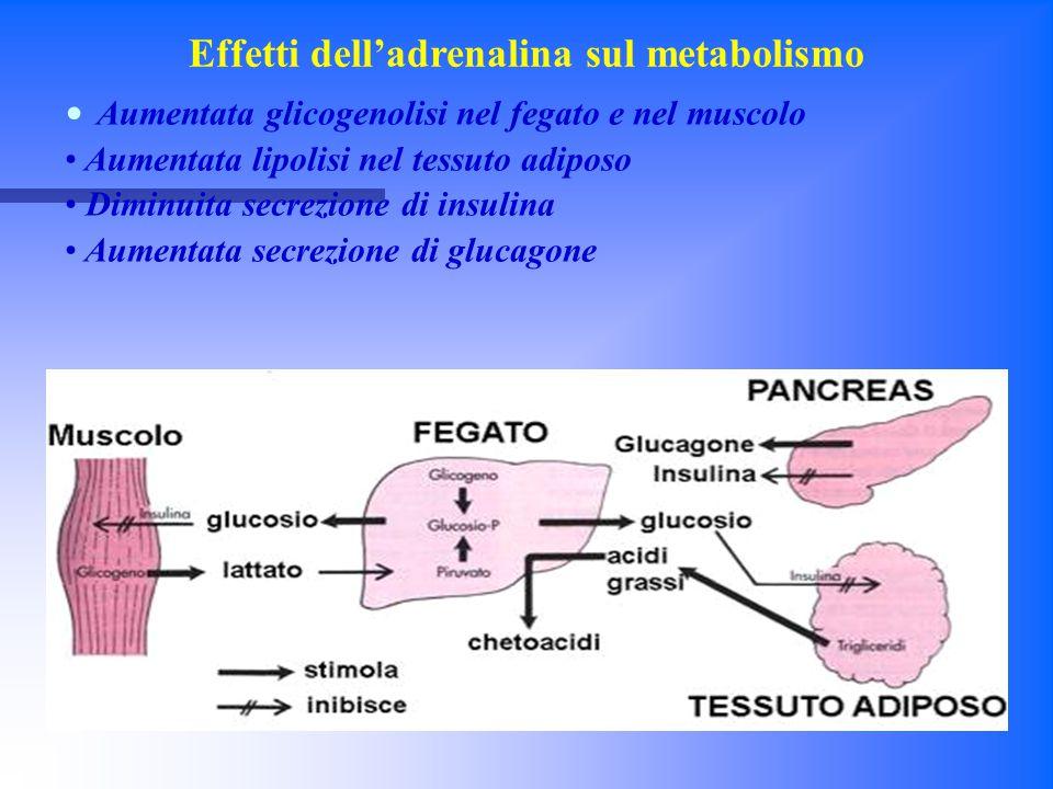 DIABETE MELLITO Per diabete mellito si intende una condizione di iperglicemia cronica caratterizzata dalla presenza di almeno uno dei seguenti parametri di laboratorio: Per diabete mellito si intende una condizione di iperglicemia cronica caratterizzata dalla presenza di almeno uno dei seguenti parametri di laboratorio: Glicemia a digiuno > 126 mg/dl; Glicemia a digiuno > 126 mg/dl; Glicemia > 200 mg/dl due ore dopo un carico orale di 75 grammi di glucosio disciolto in acqua; Glicemia > 200 mg/dl due ore dopo un carico orale di 75 grammi di glucosio disciolto in acqua; Riscontro random di valori di glicemia > 200 mg/dl in un qualunque momento della giornata; Riscontro random di valori di glicemia > 200 mg/dl in un qualunque momento della giornata; Valori percentuali di emoglobina glicosilata ( HbA1c ) > 6.5% pari a 48 millimoli/litro.