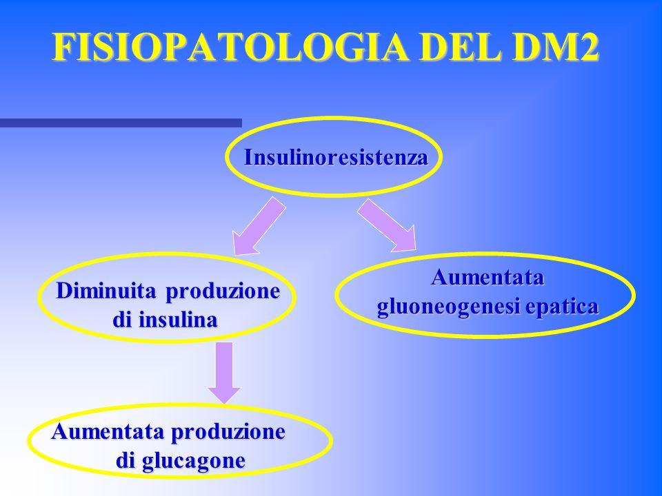 FISIOPATOLOGIA DEL DM2 Insulinoresistenza Diminuita produzione Diminuita produzione di insulina Aumentata gluoneogenesi epatica Aumentata produzione d