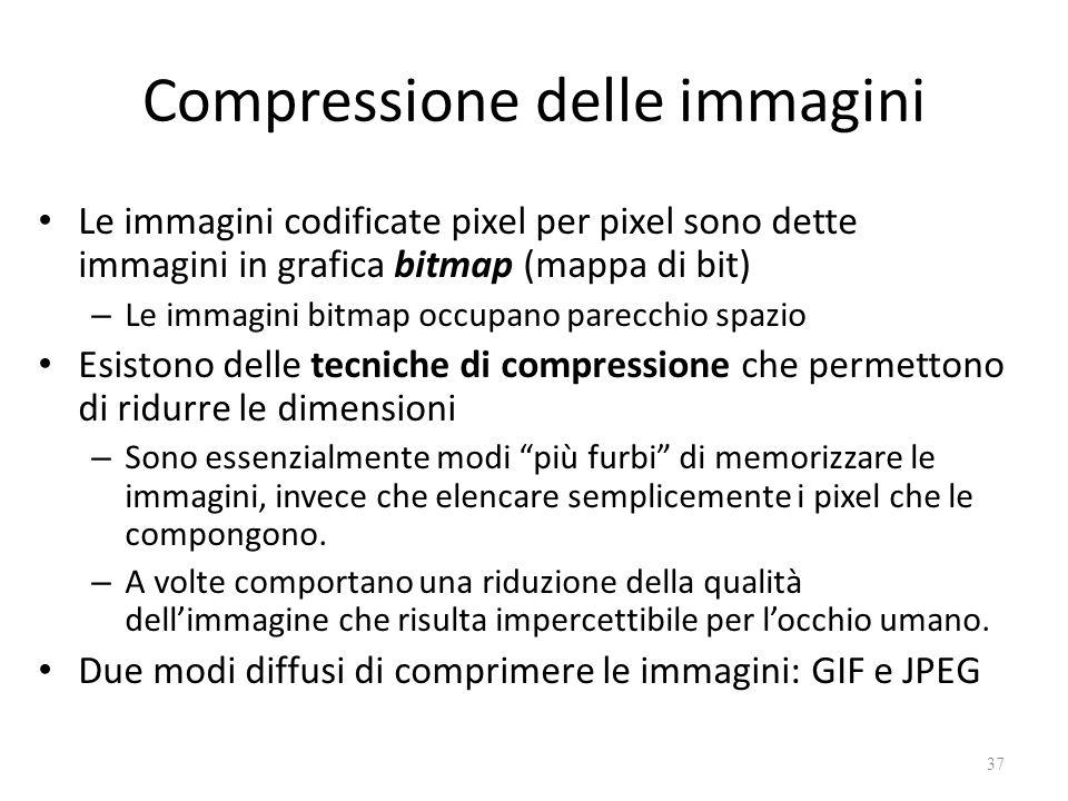 Compressione delle immagini Le immagini codificate pixel per pixel sono dette immagini in grafica bitmap (mappa di bit) – Le immagini bitmap occupano parecchio spazio Esistono delle tecniche di compressione che permettono di ridurre le dimensioni – Sono essenzialmente modi più furbi di memorizzare le immagini, invece che elencare semplicemente i pixel che le compongono.