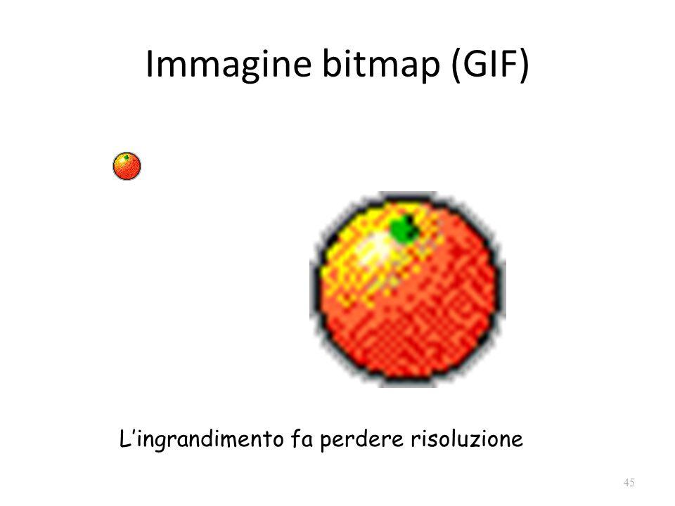 Immagine bitmap (GIF) 45 L'ingrandimento fa perdere risoluzione