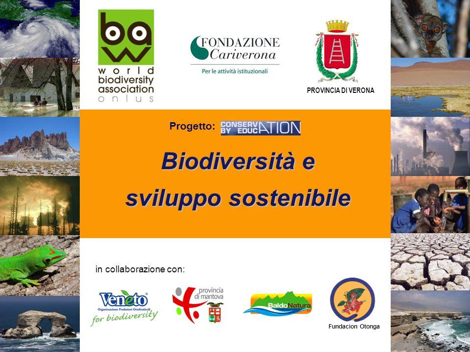 Biodiversità e sviluppo sostenibile in collaborazione con: Fundacion Otonga PROVINCIA DI VERONA Progetto:
