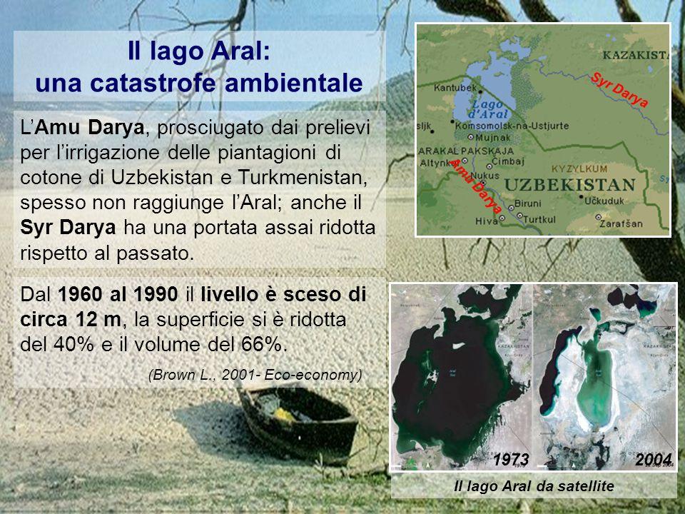 Il lago Aral: una catastrofe ambientale L'Amu Darya, prosciugato dai prelievi per l'irrigazione delle piantagioni di cotone di Uzbekistan e Turkmenistan, spesso non raggiunge l'Aral; anche il Syr Darya ha una portata assai ridotta rispetto al passato.