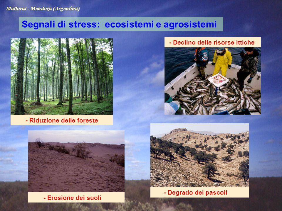 - Riduzione delle foreste - Declino delle risorse ittiche Segnali di stress: ecosistemi e agrosistemi - Erosione dei suoli - Degrado dei pascoli Mattoral - Mendoza (Argentina)