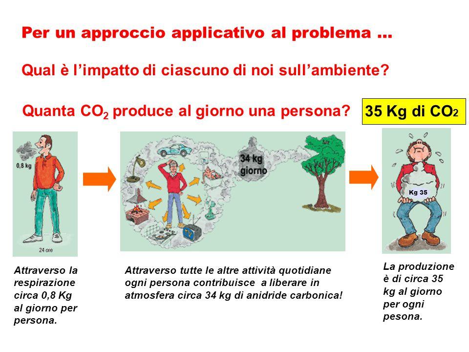 Quanta CO 2 produce al giorno una persona.Qual è l'impatto di ciascuno di noi sull'ambiente.