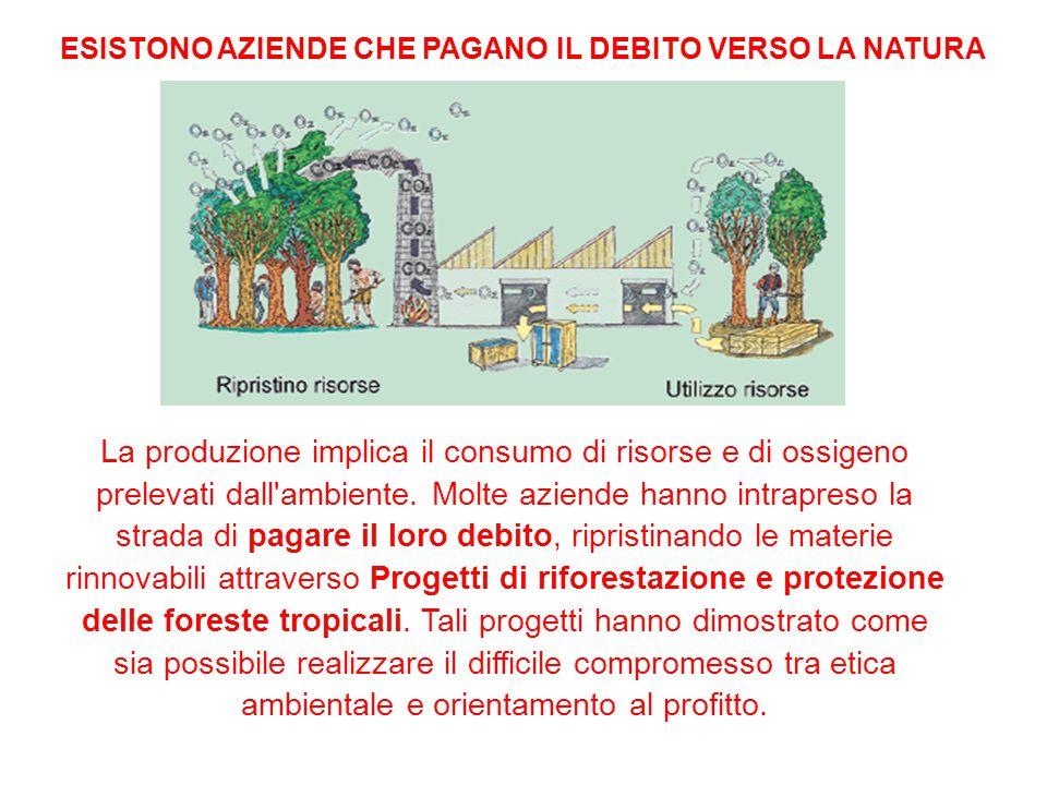 La produzione implica il consumo di risorse e di ossigeno prelevati dall ambiente.