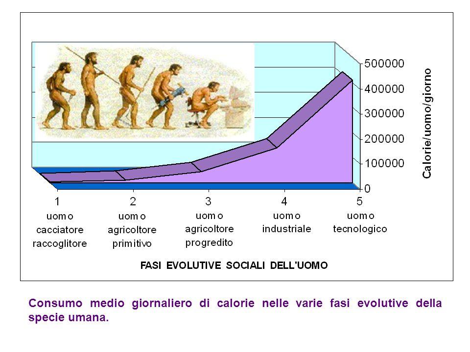 Consumo medio giornaliero di calorie nelle varie fasi evolutive della specie umana.