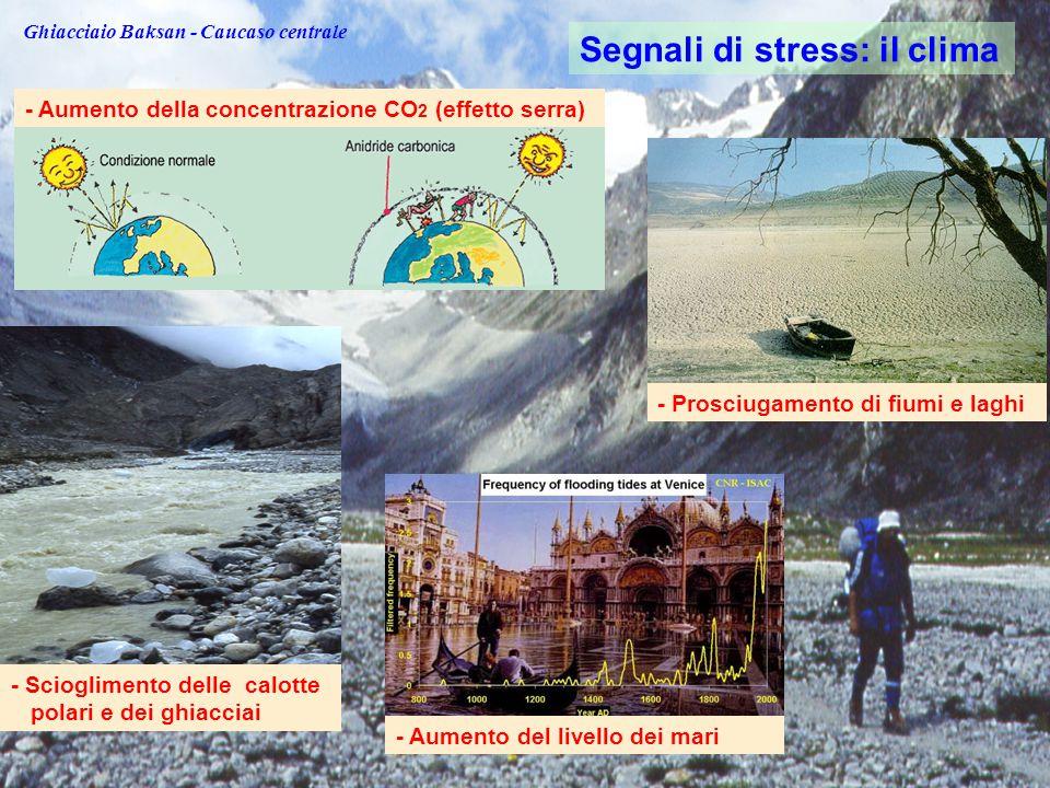 - Prosciugamento di fiumi e laghi - Aumento del livello dei mari - Scioglimento delle calotte polari e dei ghiacciai Segnali di stress: il clima - Aumento della concentrazione CO 2 (effetto serra) Ghiacciaio Baksan - Caucaso centrale