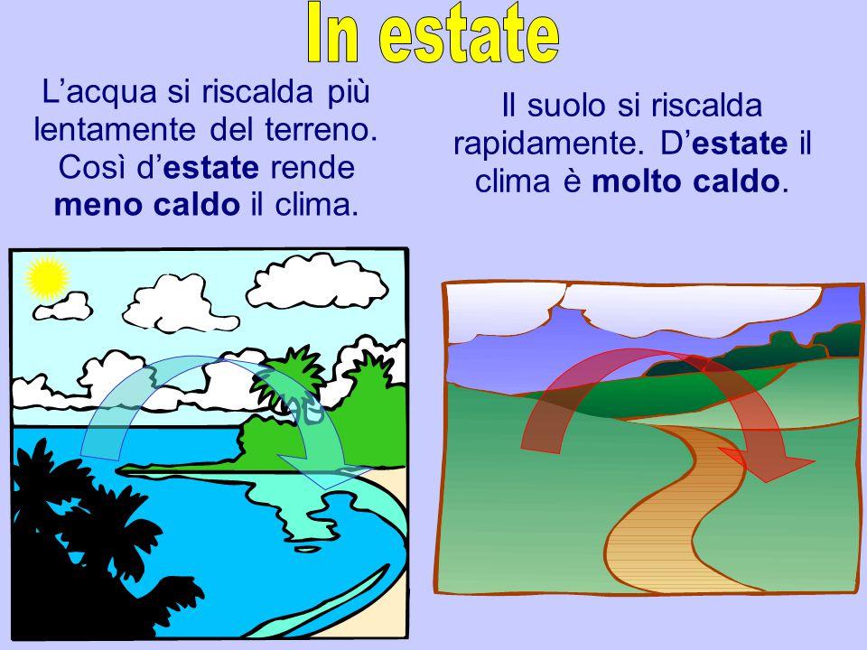 L'acqua si riscalda più lentamente del terreno. Così d'estate rende meno caldo il clima. Il suolo si riscalda rapidamente. D'estate il clima è molto c