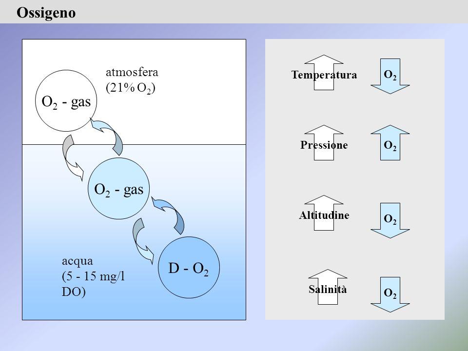 O2O2 Temperatura O2O2 Altitudine O2O2 Pressione Salinità O2O2 Ossigeno O 2 - gas D - O 2 atmosfera (21% O 2 ) acqua (5 - 15 mg/l DO)