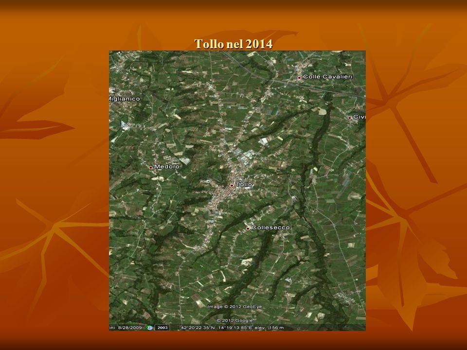 Le analisi di conoscenza delle caratteristiche del territorio vitivinicolo/4 La più importante iniziativa a valorizzare la produzione vitivinicola Tollese è stata l'istituzione della DOC Tullum (D.M.