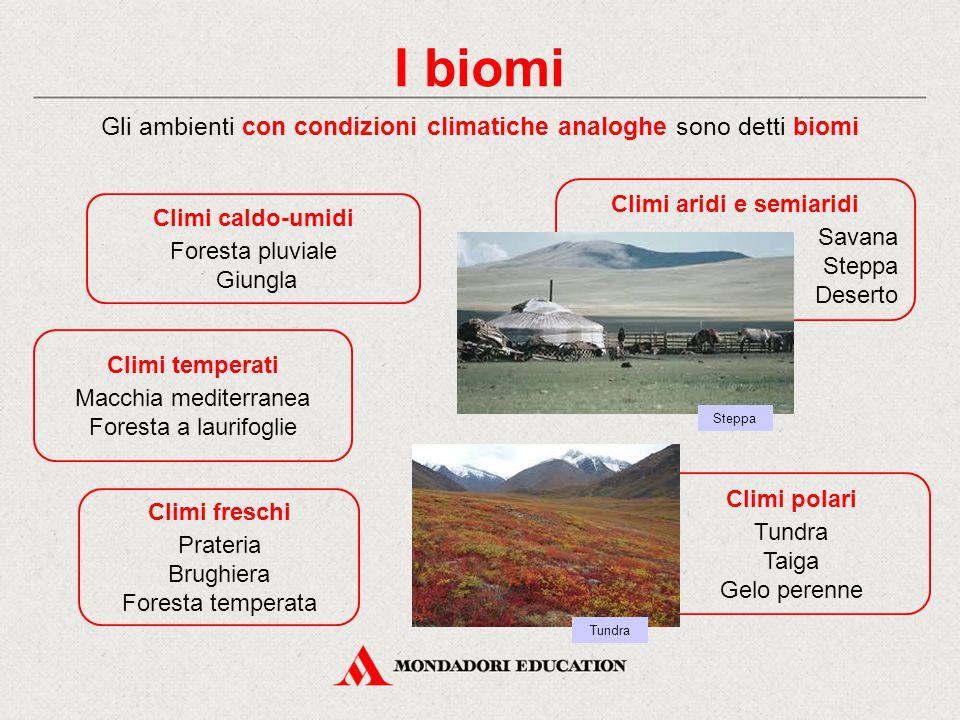 I biomi Gli ambienti con condizioni climatiche analoghe sono detti biomi Climi caldo-umidi Foresta pluviale Giungla Climi aridi e semiaridi Savana Ste