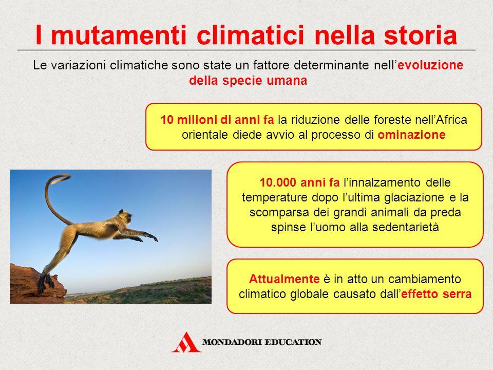 I mutamenti climatici nella storia 10 milioni di anni fa la riduzione delle foreste nell'Africa orientale diede avvio al processo di ominazione Le var