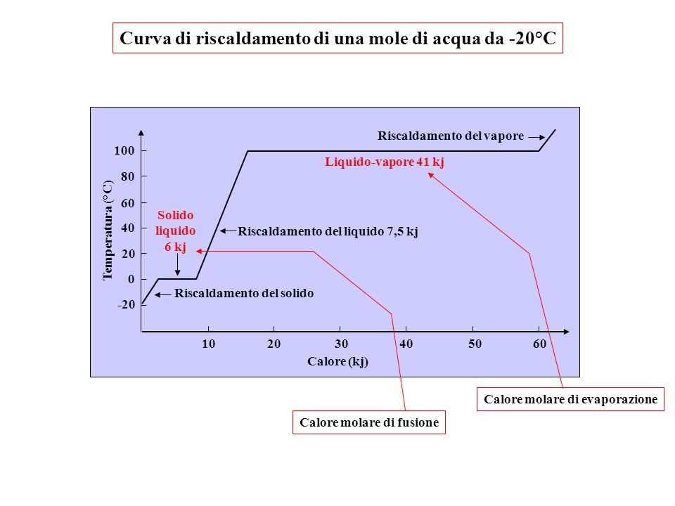 Calore (kj) Riscaldamento del solido Riscaldamento del liquido 7,5 kj Liquido-vapore 41 kj Riscaldamento del vapore Solido liquido 6 kj Temperatura (°