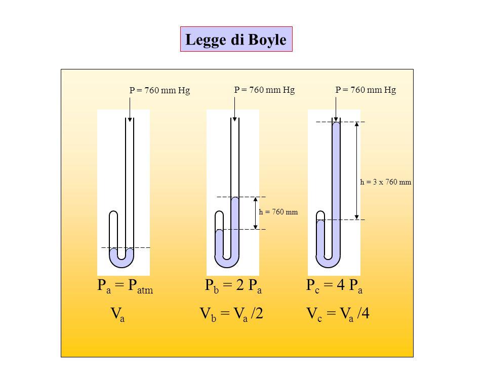 P = 760 mm Hg h = 760 mm h = 3 x 760 mm P a = P atm P b = 2 P a P c = 4 P a V c = V a /4V b = V a /2VaVa Legge di Boyle