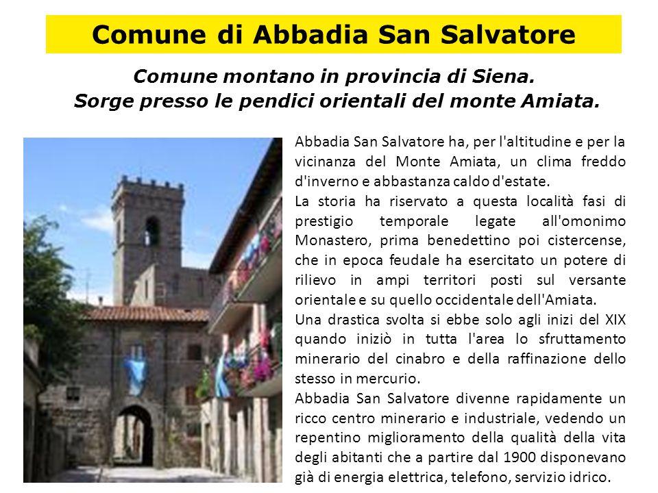 Comune di Abbadia San Salvatore Comune montano in provincia di Siena.