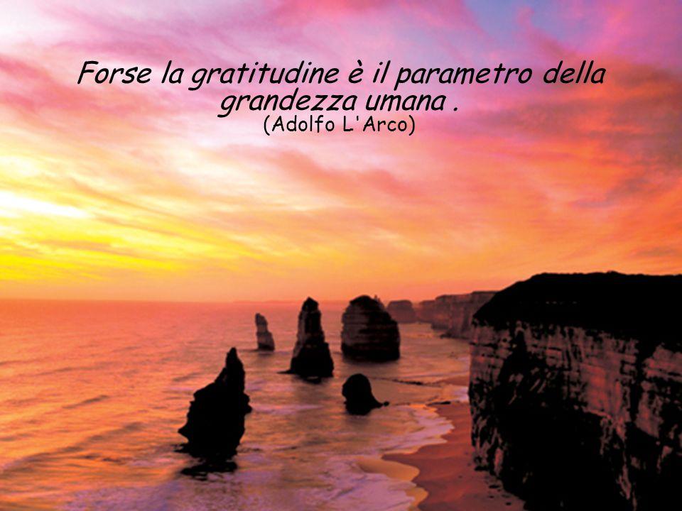 Forse la gratitudine è il parametro della grandezza umana. (Adolfo L Arco)