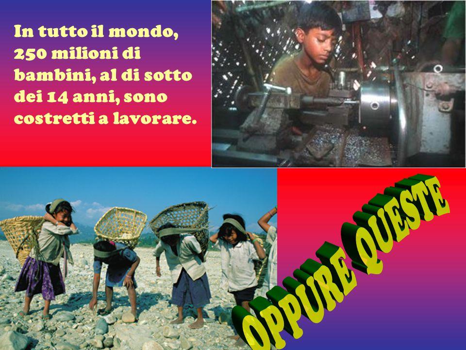 In tutto il mondo, 250 milioni di bambini, al di sotto dei 14 anni, sono costretti a lavorare.