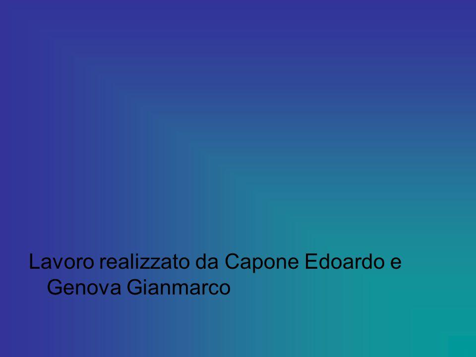 Lavoro realizzato da Capone Edoardo e Genova Gianmarco