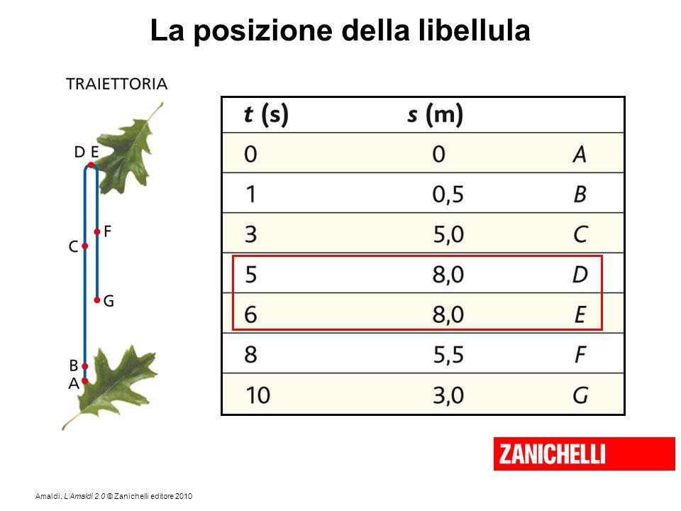 Amaldi, L'Amaldi 2.0 © Zanichelli editore 2010 La posizione della libellula