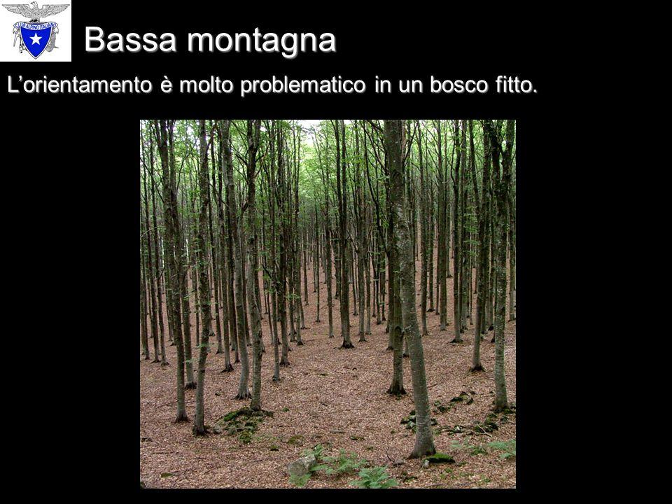 L'orientamento è molto problematico in un bosco fitto. Bassa montagna