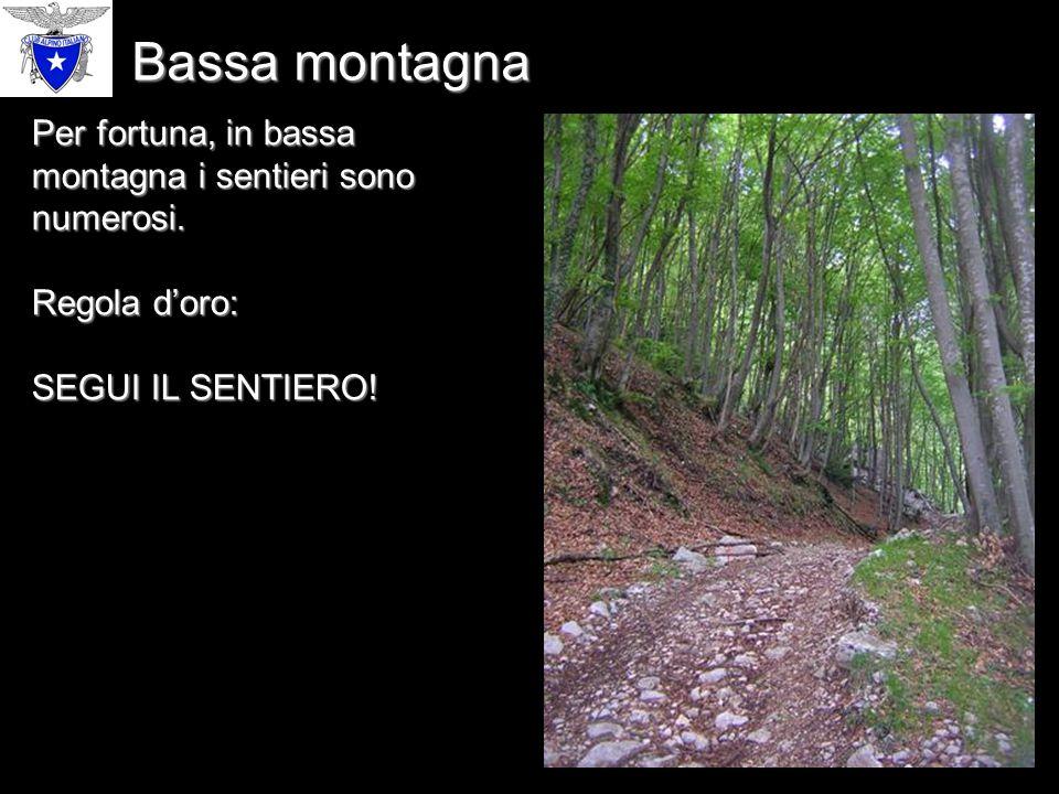 Per fortuna, in bassa montagna i sentieri sono numerosi.