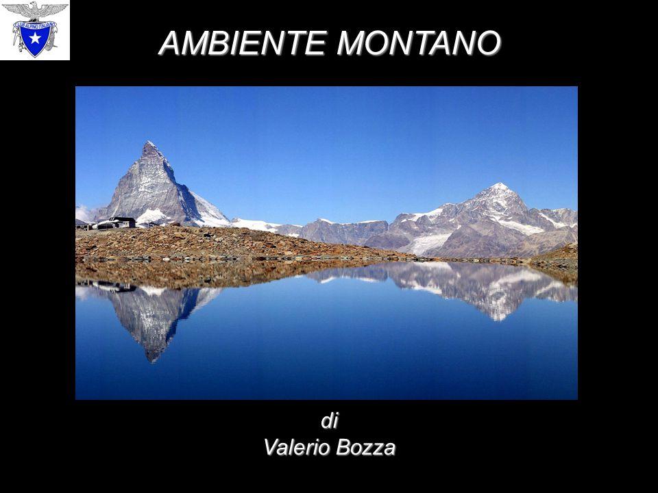 AMBIENTE MONTANO di Valerio Bozza