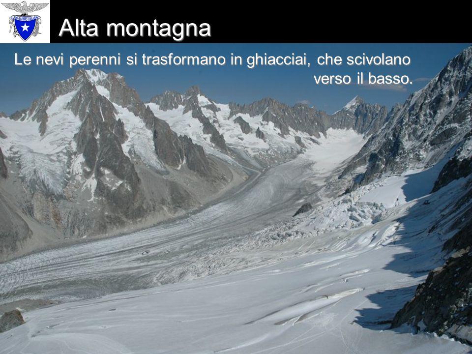 Alta montagna Le nevi perenni si trasformano in ghiacciai, che scivolano verso il basso.